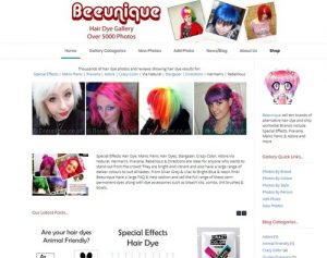 Hair Dye Gallery logo